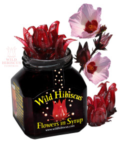 The Wild Hibiscus Flower Company, Giveaway Promotion on www.goodfoodgourmet.com
